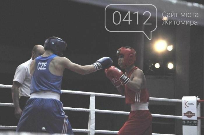 Боксери з 11 країн світу змагаються за призи братів Кличків у Бердичеві, фото-8