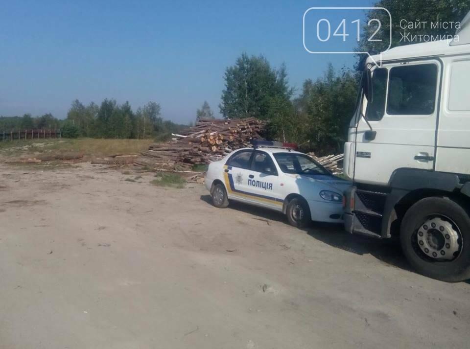 У Житомирському районі поліцейські виявили склад краденої деревини, фото-2