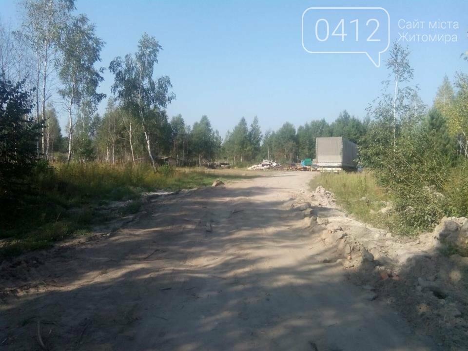 У Житомирському районі поліцейські виявили склад краденої деревини, фото-5