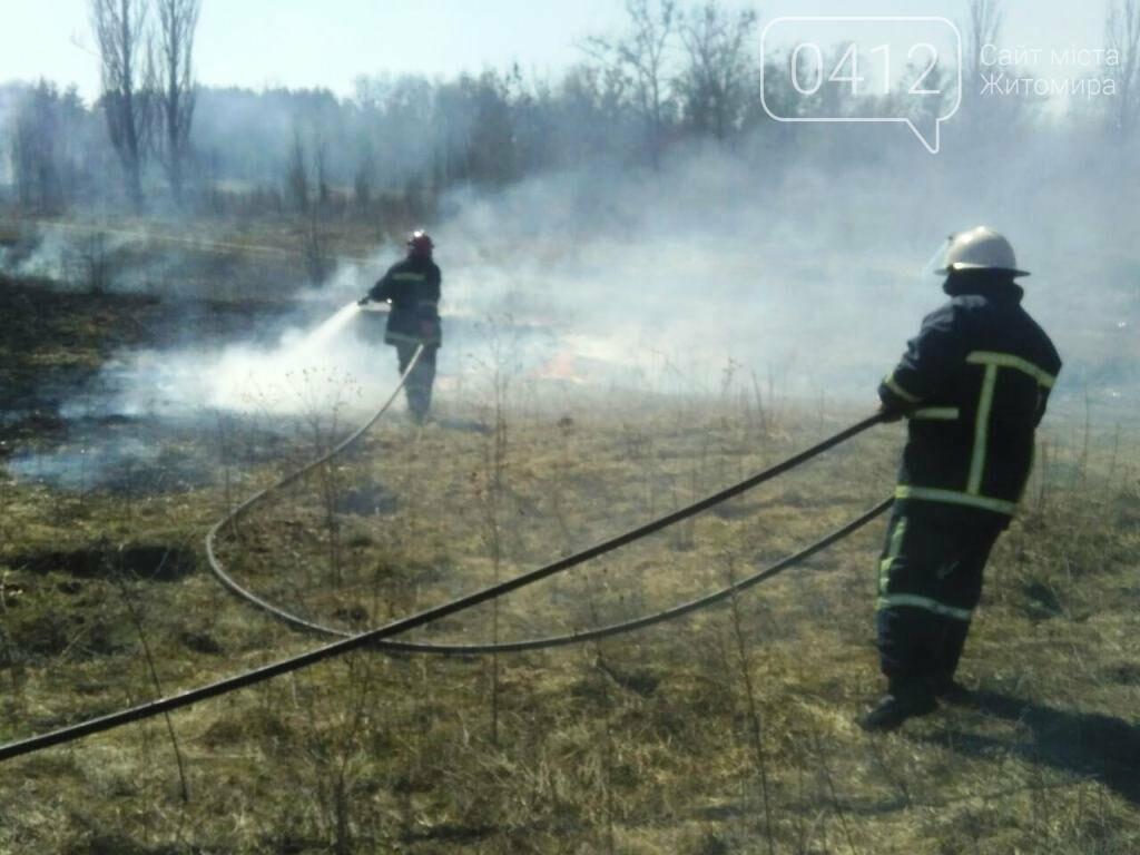 На Житомирщині почали горіти поля та чагарники, фото-2