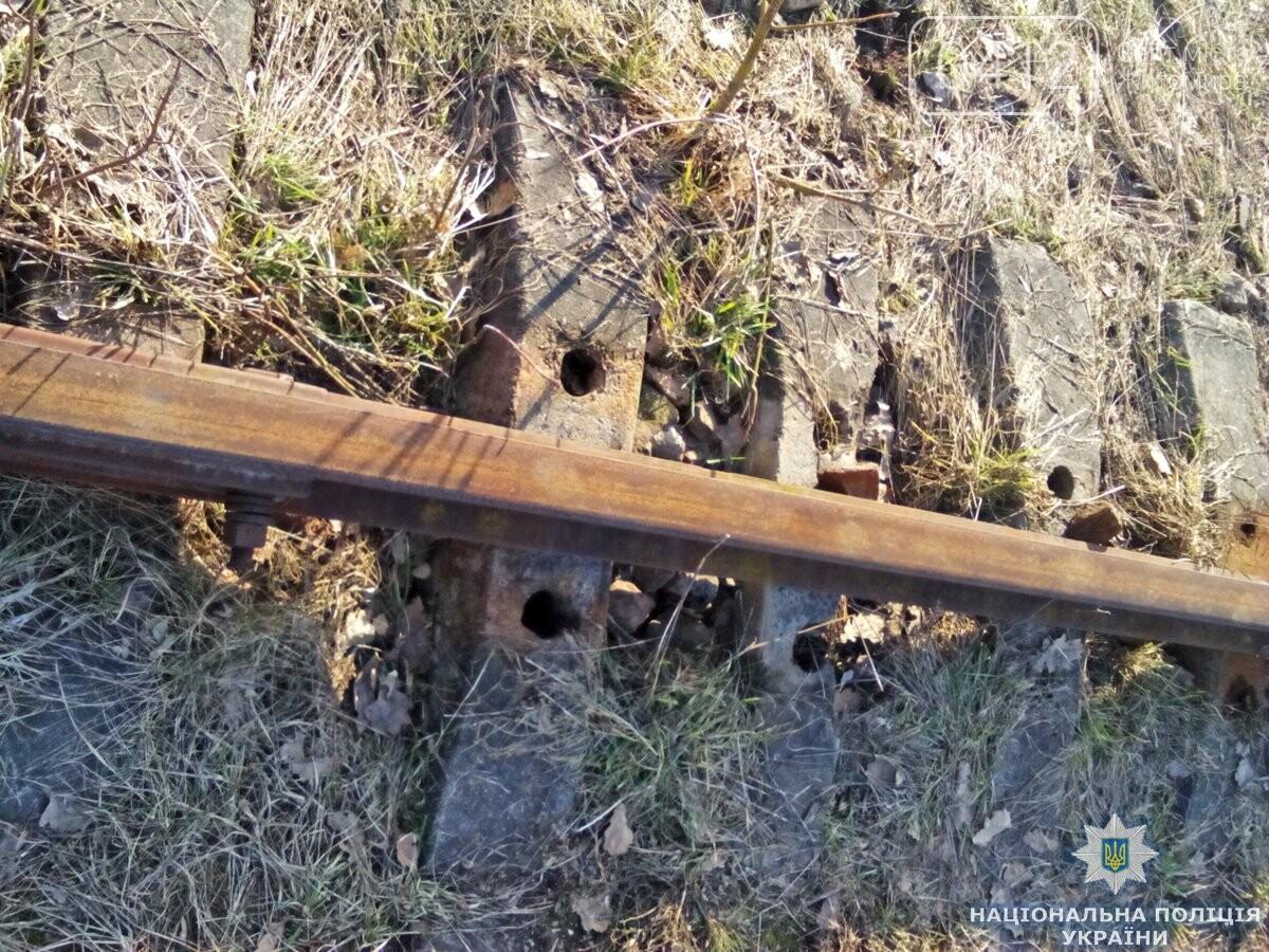 На Андрушівщині поліція викрила залізничного «диверсанта», фото-4