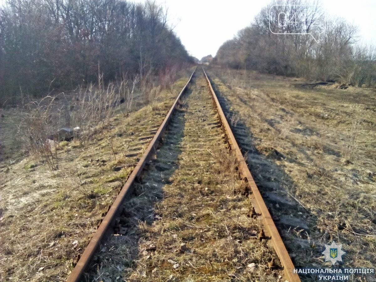 На Андрушівщині поліція викрила залізничного «диверсанта», фото-2
