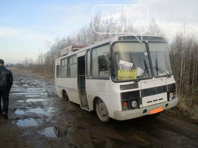 На Житомирщині рейсовий автобус з 35 пасажирами провалився в яму , фото-1