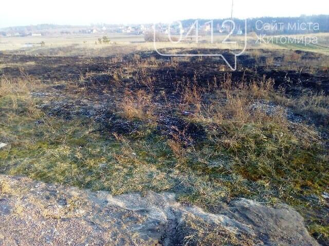 На Житомирщині за добу вигоріло 1,5 гектари сухої трави, фото-2