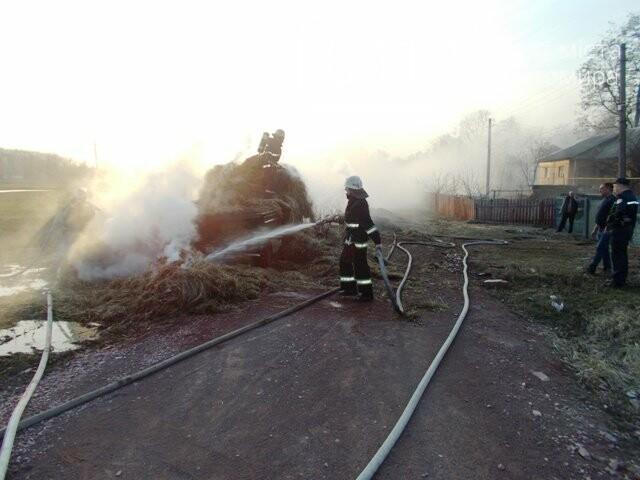 В Овручі загорілась вантажівка з соломою, фото-8