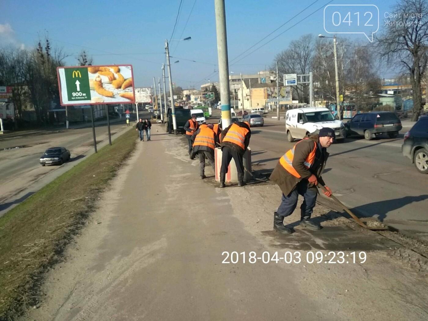 У Житомирі триває весняне загальноміське прибирання, фото-4