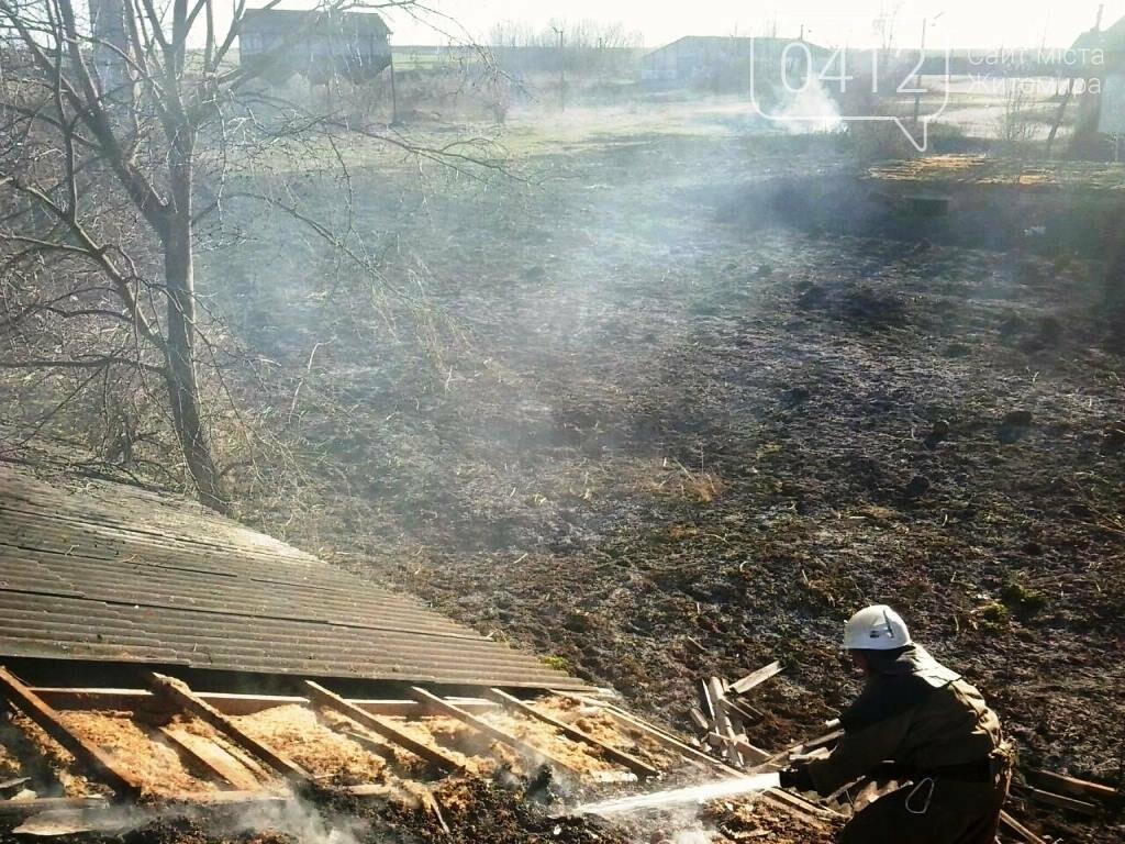 На Житомирщині горять поля: вогонь переходить на будинки, фото-1