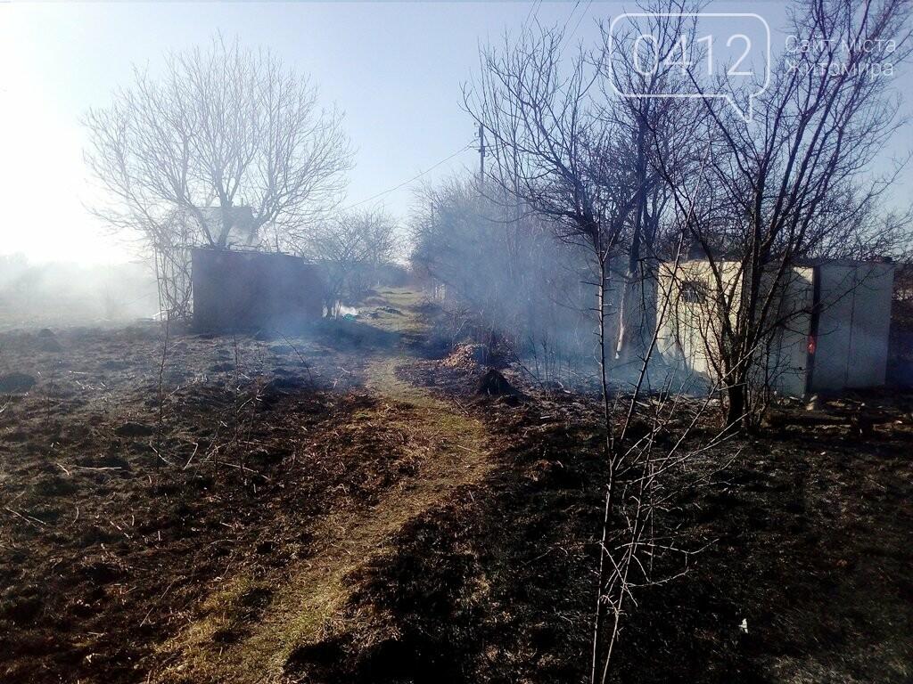 На Житомирщині горять поля: вогонь переходить на будинки, фото-3