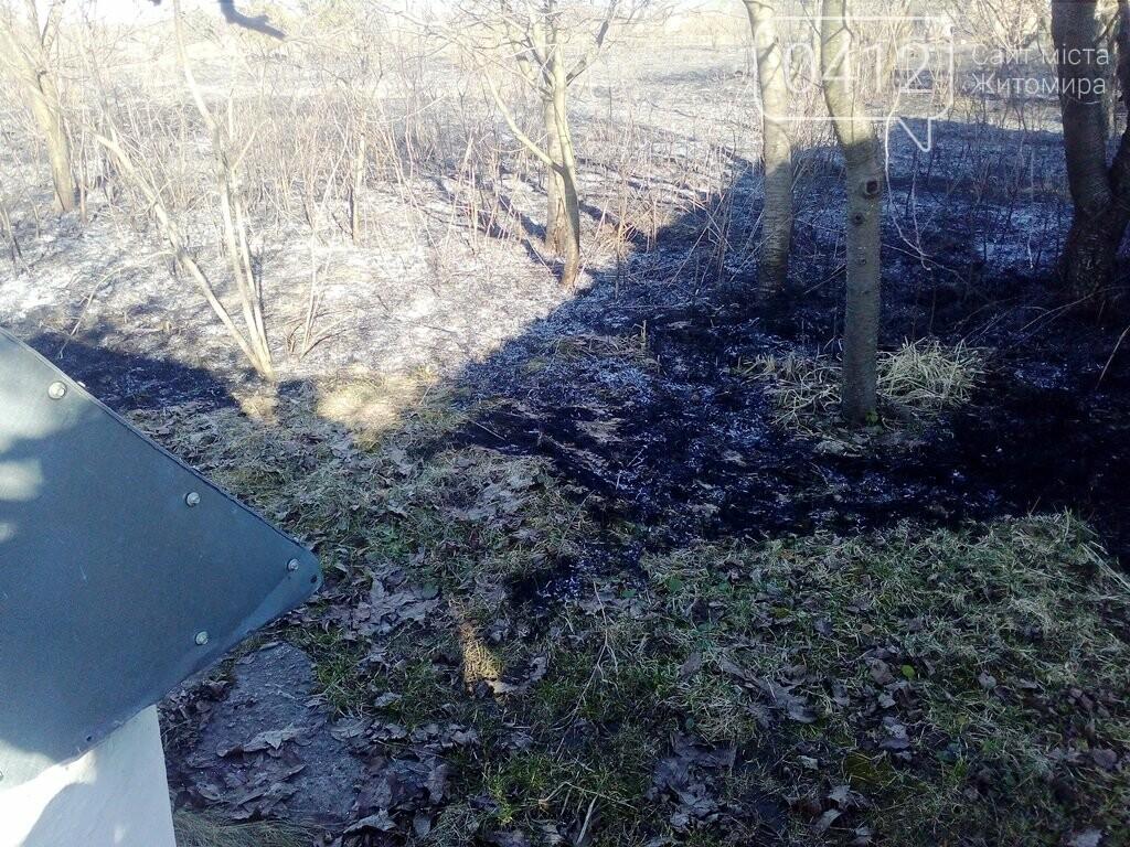 На Житомирщині горять поля: вогонь переходить на будинки, фото-4