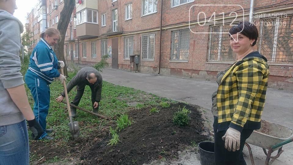 Житомирські ОСББ долучаються до прибирання міста, фото-2