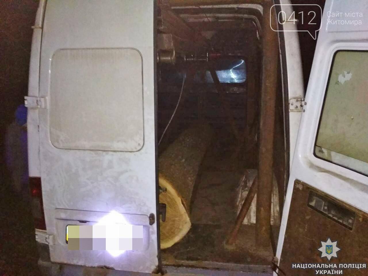 На Житомирщині поліція розслідує крадіжки деревини, фото-1