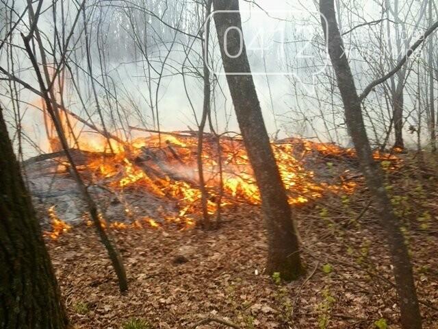 За добу на Житомирщині вигоріло майже 9 гектарів сухої трави, фото-5