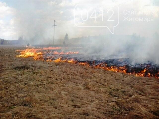 За добу на Житомирщині вигоріло майже 9 гектарів сухої трави, фото-2