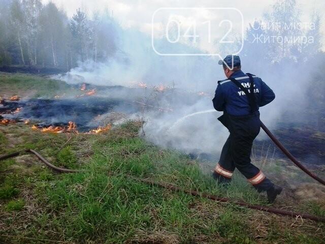 За добу на Житомирщині вигоріло майже 9 гектарів сухої трави, фото-3