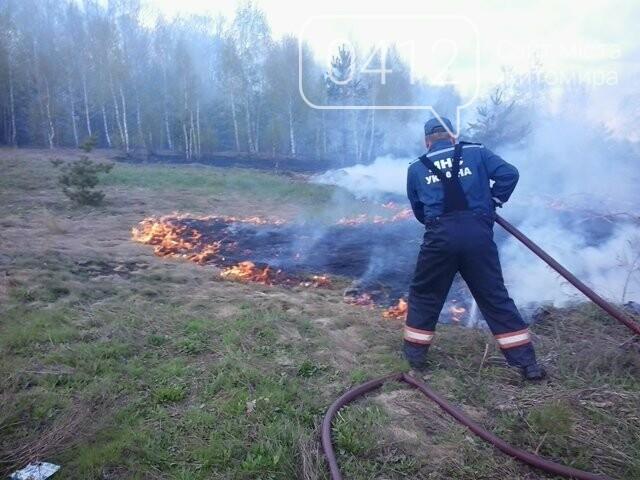За добу на Житомирщині вигоріло майже 9 гектарів сухої трави, фото-4