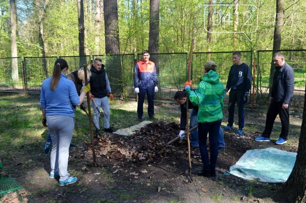 Житомирський виконком прибирав територію дитячого табору «Супутник», фото-1