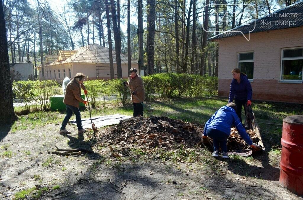 Житомирський виконком прибирав територію дитячого табору «Супутник», фото-4