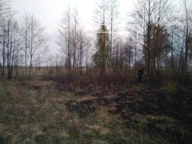 У Малинському районі через людську необережність вигоріло 2 гектари сухостою, фото-2