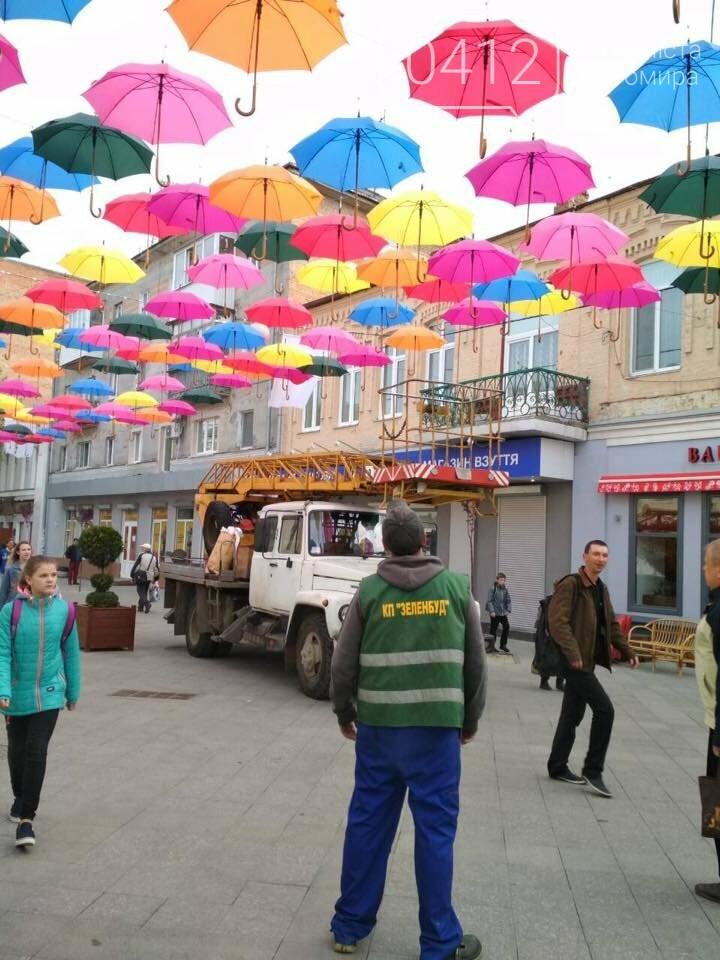 """У центрі Житомира з'явилась """"Алея літаючих парасольок"""", фото-2"""