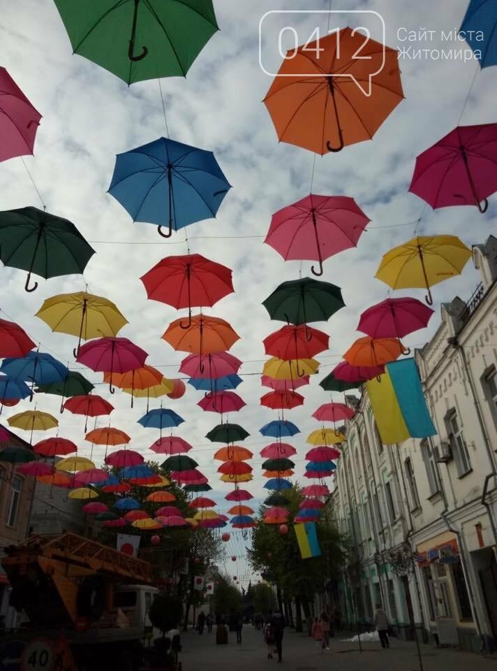 """У центрі Житомира з'явилась """"Алея літаючих парасольок"""", фото-1"""