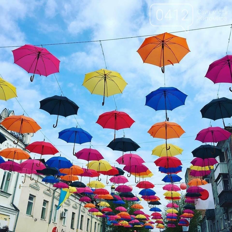 """У центрі Житомира з'явилась """"Алея літаючих парасольок"""", фото-4"""