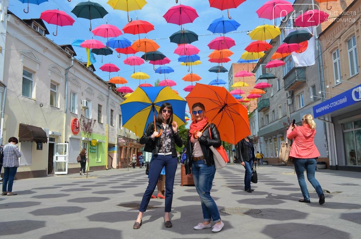 """У центрі Житомира з'явилась """"Алея літаючих парасольок"""", фото-7"""