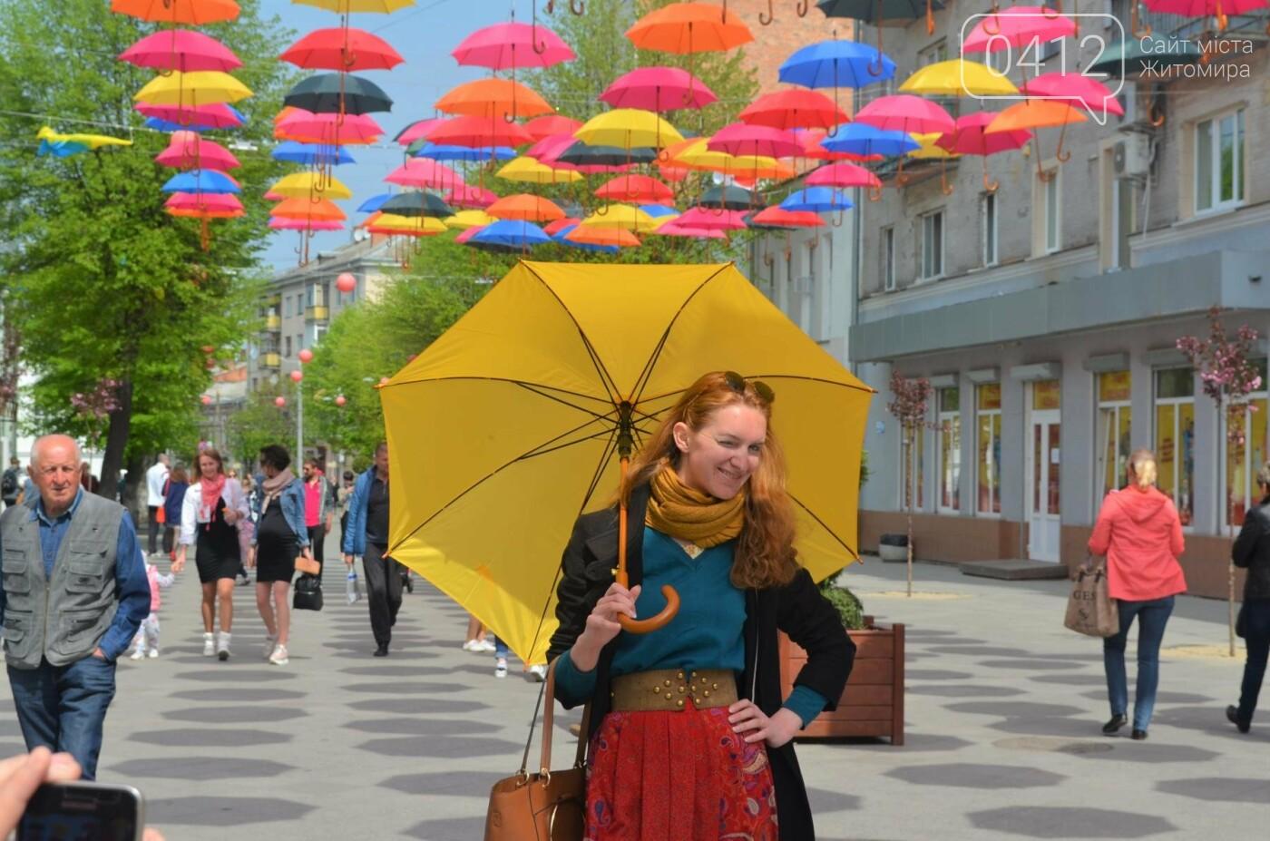 """У центрі Житомира з'явилась """"Алея літаючих парасольок"""", фото-6"""