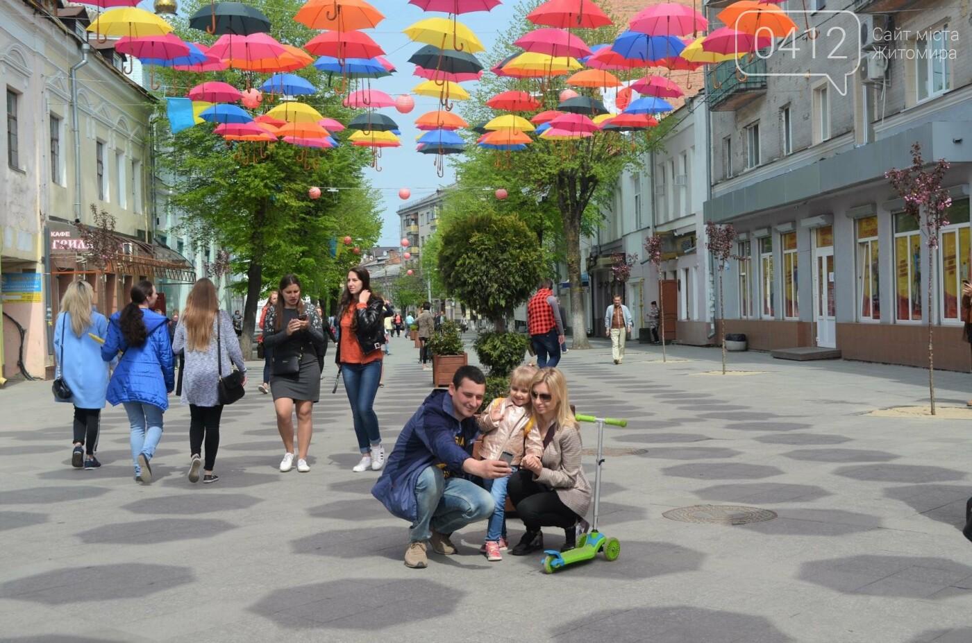 """У центрі Житомира з'явилась """"Алея літаючих парасольок"""", фото-8"""