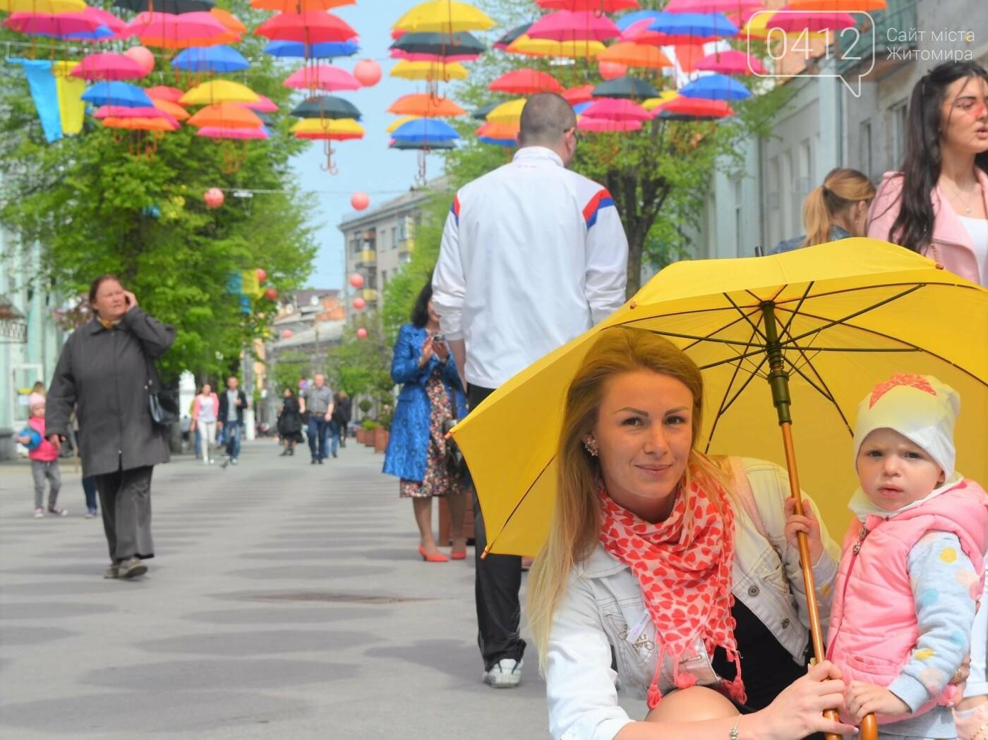 """У центрі Житомира з'явилась """"Алея літаючих парасольок"""", фото-5"""