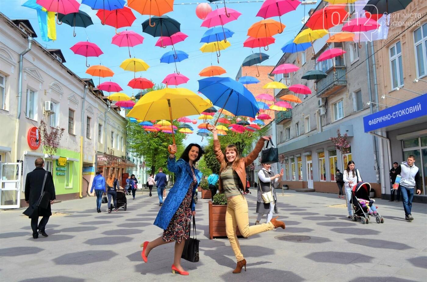 """У центрі Житомира з'явилась """"Алея літаючих парасольок"""", фото-9"""