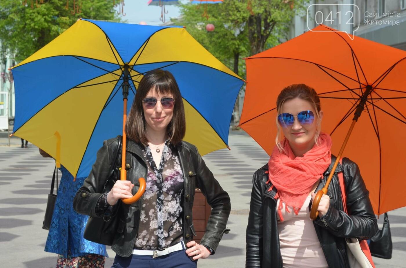 """У центрі Житомира з'явилась """"Алея літаючих парасольок"""", фото-10"""