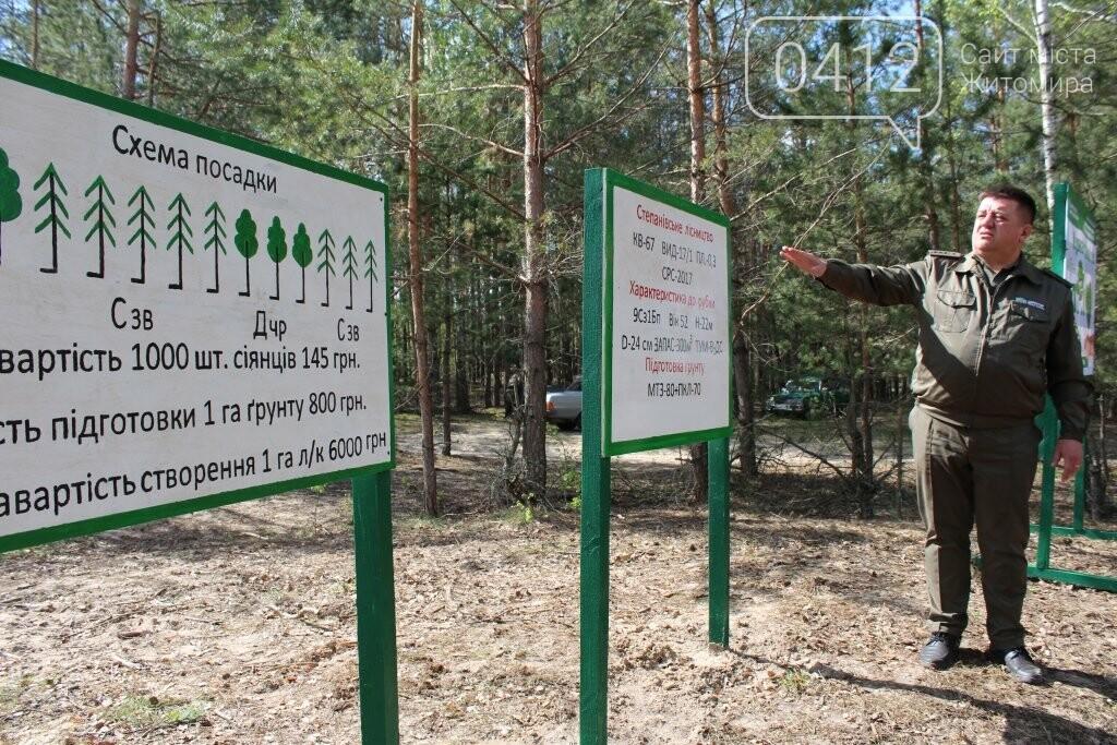 На Житомирщині журналісти висадили ще одну, вже 9-у, ділянку лісу, фото-4
