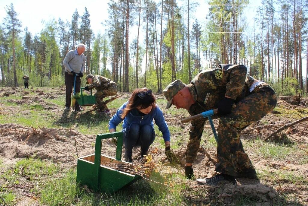 На Житомирщині журналісти висадили ще одну, вже 9-у, ділянку лісу, фото-5