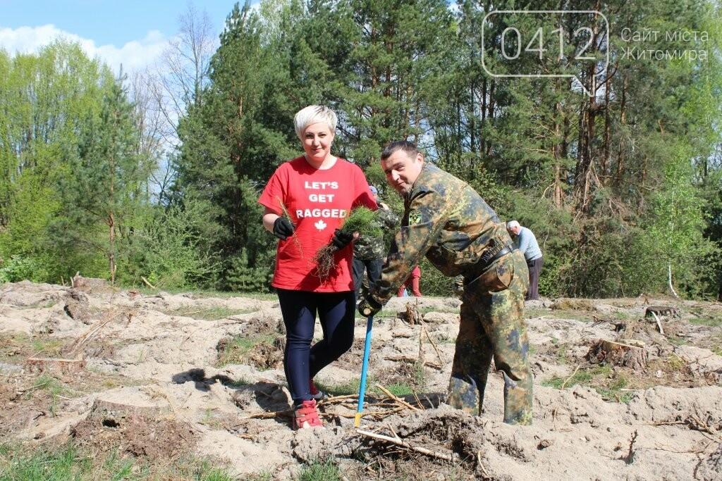 На Житомирщині журналісти висадили ще одну, вже 9-у, ділянку лісу, фото-6