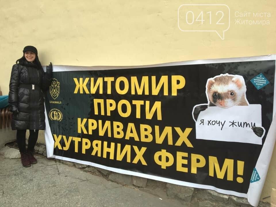 Житомир проти хутряних ферм