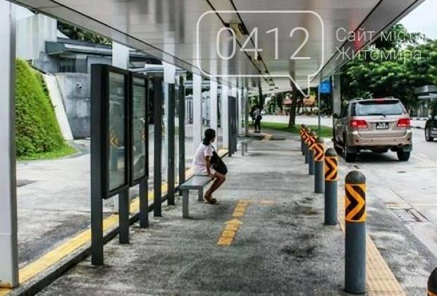 На сайті Житомирської міської ради створено петицію щодо встановлення захисту на тротуарах, фото-1