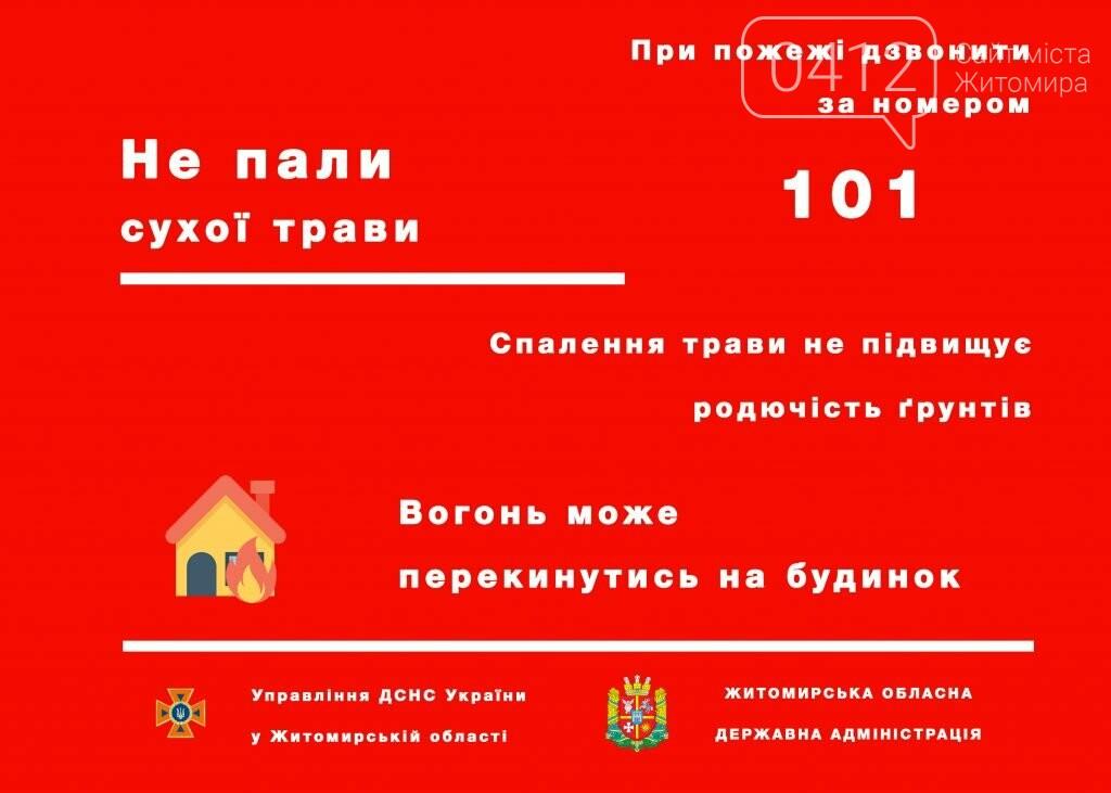 За пошкодження лісів вогнем необхідно буде сплатити штраф до 153 тис. грн., фото-1