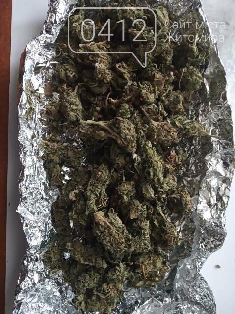 Житомирянина судитимуть за збут особливо небезпечних наркотиків і психотропних речовин, фото-4