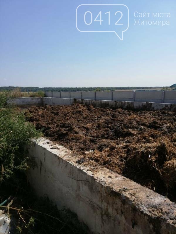Суд припинив діяльність норкової ферми на Житомирщині, де знущалися над тваринами, фото-2