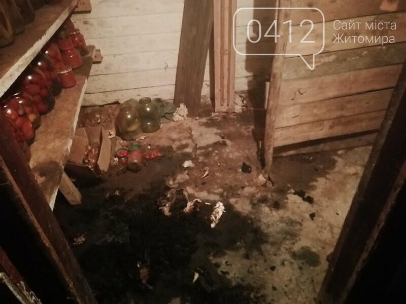 В Житомирській області на пожежі в житловому будинку загинула жінка, фото-1