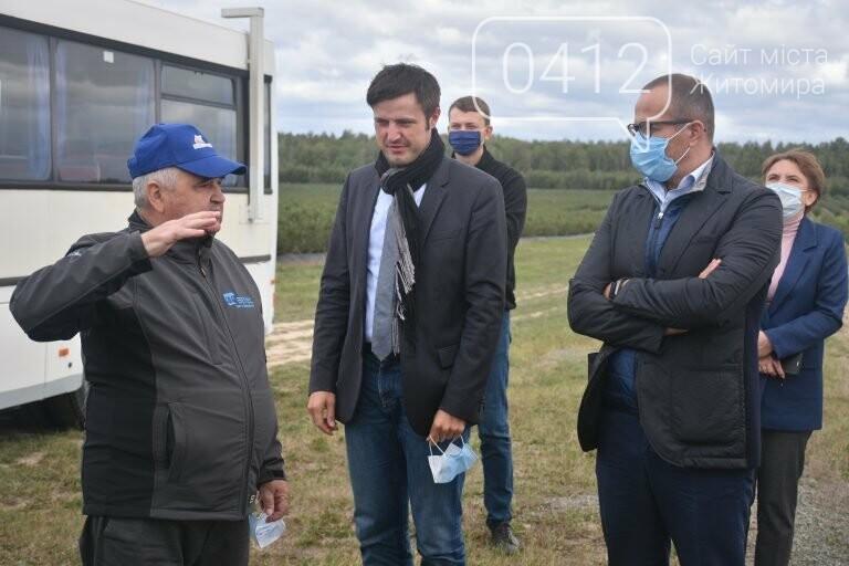 У Житомирській області фермер висадив 450 га лохини. ФОТО, фото-9