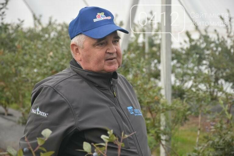 У Житомирській області фермер висадив 450 га лохини. ФОТО, фото-6