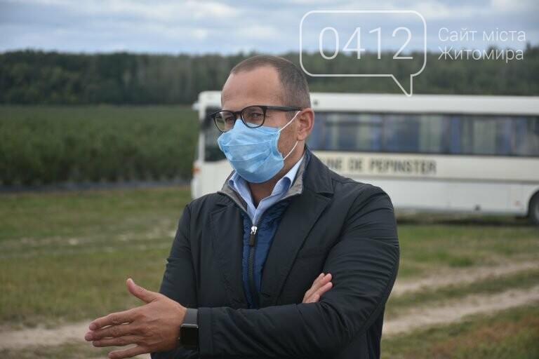 У Житомирській області фермер висадив 450 га лохини. ФОТО, фото-7