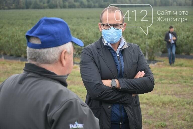 У Житомирській області фермер висадив 450 га лохини. ФОТО, фото-8