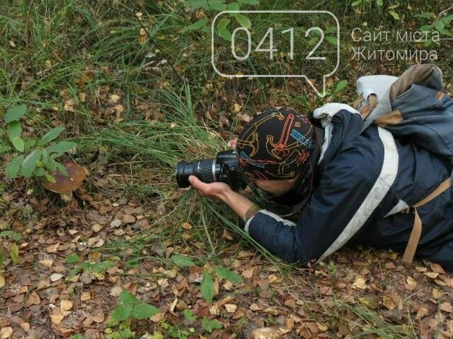 Фотозамальовка: у Пищівському лісництві, фото-2