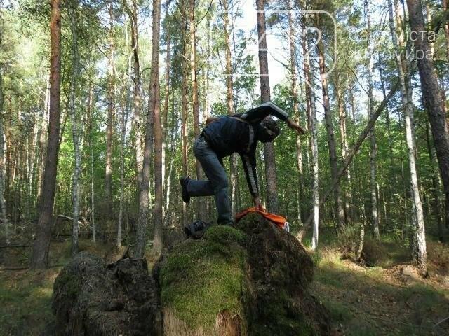Фотозамальовка: у Пищівському лісництві, фото-3