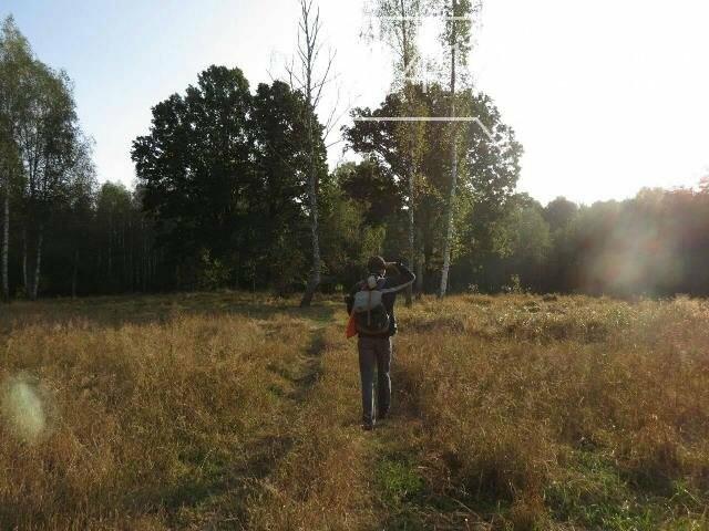 Фотозамальовка: у Пищівському лісництві, фото-4