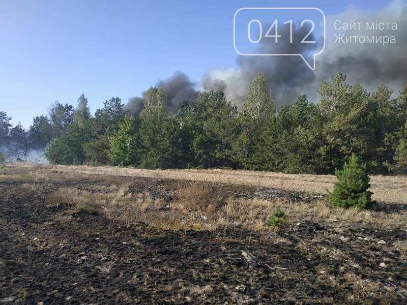 На Житомирщині вогнеборці загасили одинадцять загорянь сухостою, фото-1