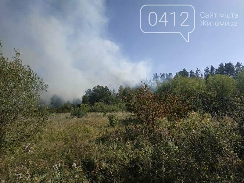 На Житомирщині вогнеборці загасили одинадцять загорянь сухостою, фото-2