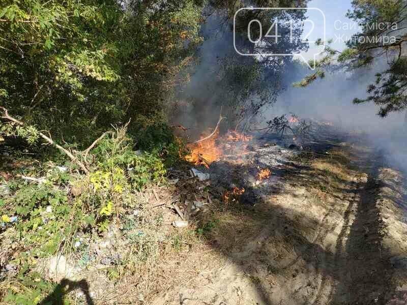 На Житомирщині вогнеборці загасили одинадцять загорянь сухостою, фото-4